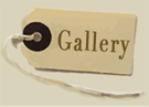 Meticulous Ltd Gallery
